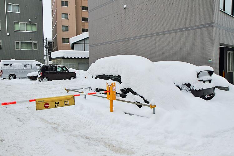2017冬之北海道442