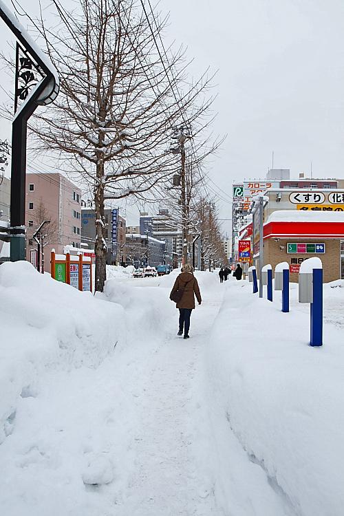 2017冬之北海道444
