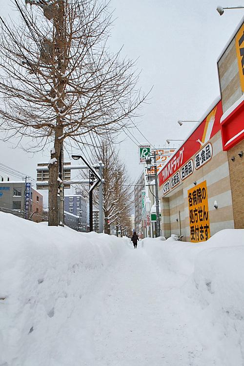 2017冬之北海道447