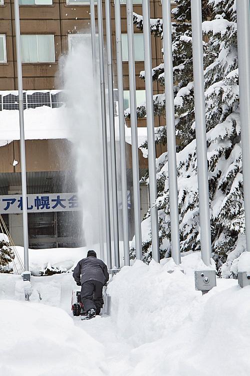 2017冬之北海道473