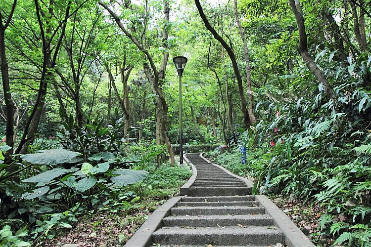虎頭山公園3