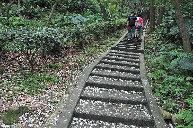 虎頭山公園4