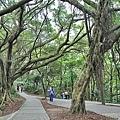 虎頭山公園7