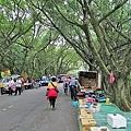虎頭山公園8