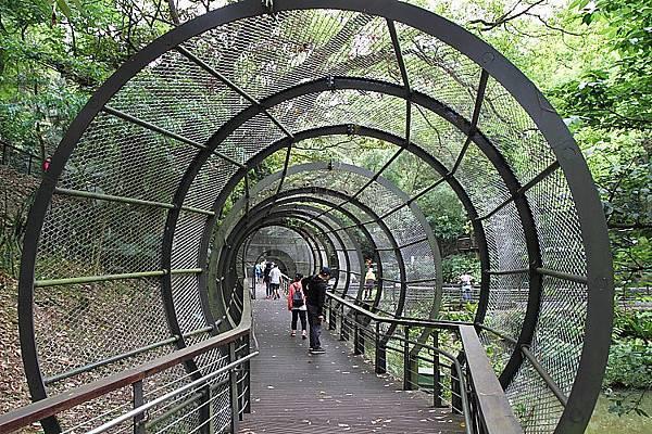 虎頭山公園15