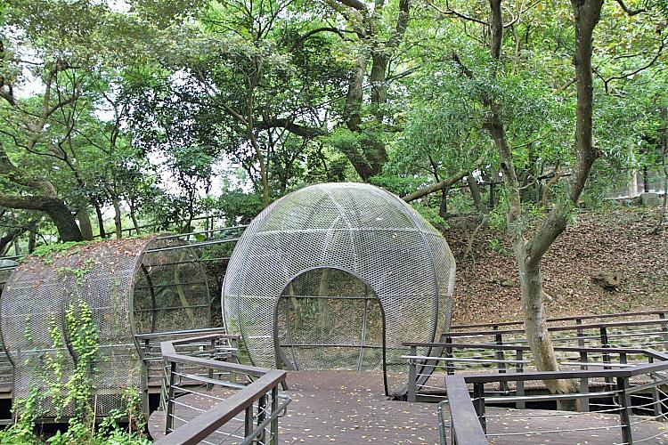 虎頭山公園16