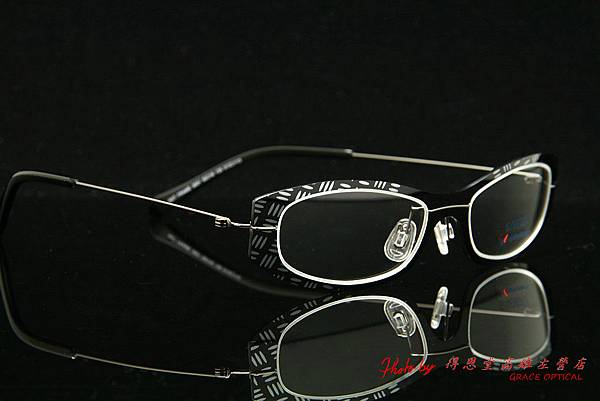 SYNERGY eyewear 3001 013