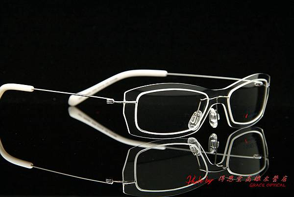 SYNERGY eyewear 3005 010