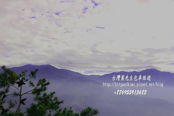 IMG_0871.jpg
