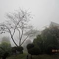 東埔溫泉2014年12月
