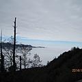 塔塔加賞楓2014年12月