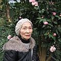 〔媽咪〕杉林溪-藥花園