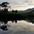 高雄中都濕地公園7.jpg