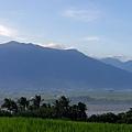 鹿野高台看縱谷.海岸山脈3.jpg