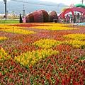 2015新社花海節&臺中國際花毯節20151111