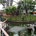 屏東內埔-高腳屋泰國南洋咖啡2