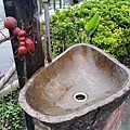 屏東林邊-水月軒鮮蝦美食8