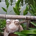 屏東林邊-水月軒鮮蝦美食12