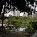 高雄-中都濕地公園1