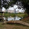 高雄-中都濕地公園2