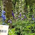 台南-南元花園休閒01