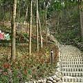 台南-南元花園休閒31