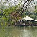 台南-南元花園休閒32