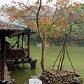 台南-南元花園休閒19