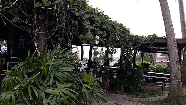 路邊咖啡館-小魚兒的家14