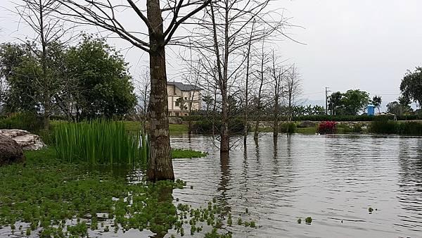 花蓮吉安鄉-松湖驛站周遭景觀09