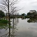 花蓮吉安鄉-松湖驛站周遭景觀04