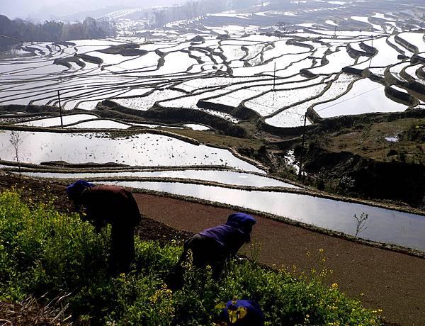 5川黔滇桂旅遊-3 140
