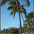 Hawaii 8.jpg