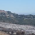 Palos Verde-火燒山