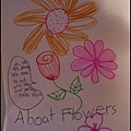 Doris drawing book