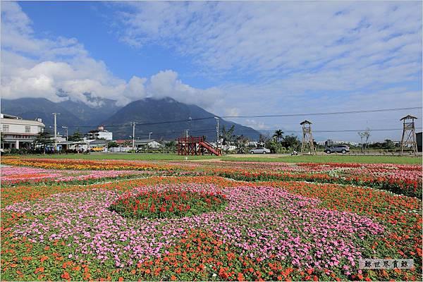 2011.12.28 花海04.jpg
