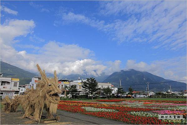 2011.12.28 花海06.jpg