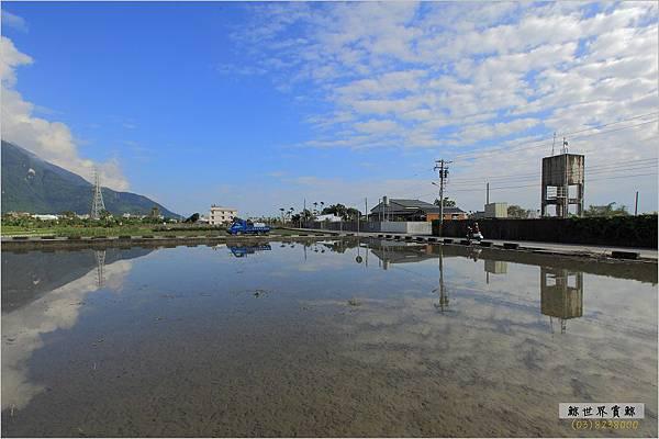 2011.12.28 花海12.jpg