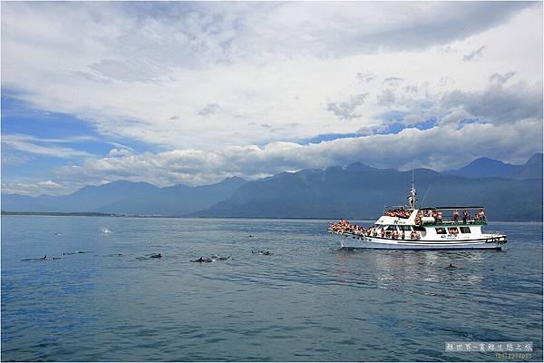 2012.05.01 五月鯨豚14