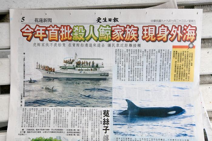 虎鯨by更生日報01.jpg