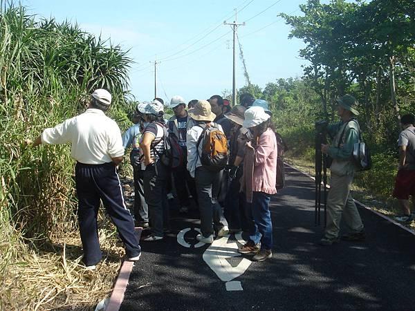 溪口生態導覽