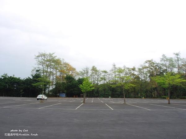 DSCN6742-vert