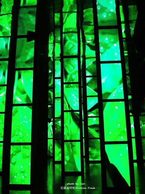 DSCN7244-vert