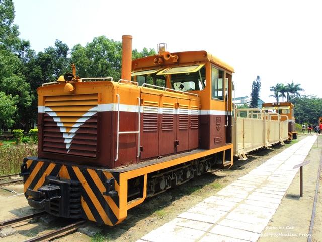 DSCN7400-vert