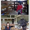 20130207-木瓜溪農場02.jpg