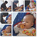 20100130蘋果收涎.jpg