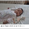 輔具-蛙袋四.JPG