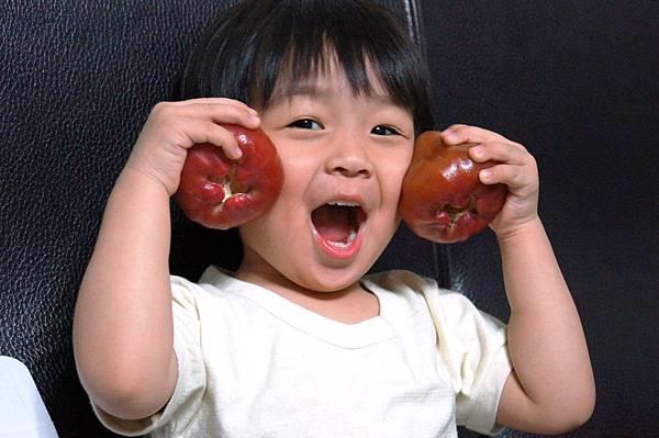 """宅配美食-清甜好滋味屏東佳冬直送蓮霧透心紅""""石頭園"""""""