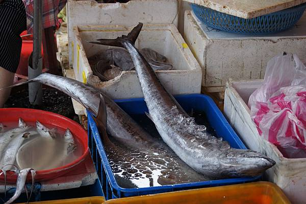 """宜蘭景點推薦-在地人都來這買,超新鮮海鮮都在宜蘭""""大溪漁港"""""""