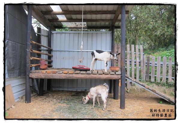 好時節農莊:適合全家同遊~好時節農莊